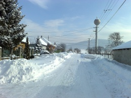Göncruszka télen is szép